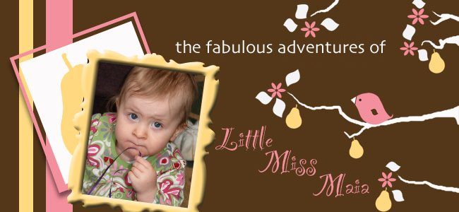the fabulous adventures of little miss maia