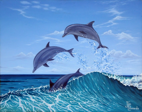 Dolphins at Play 16 X 20