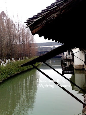 wuzhen bird