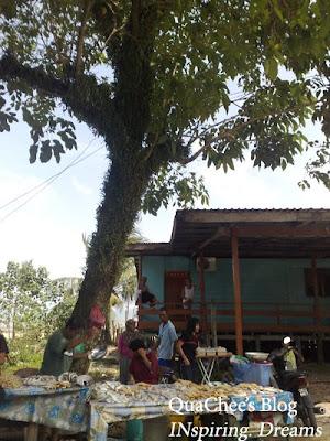 kuching kampung buntal stall tree