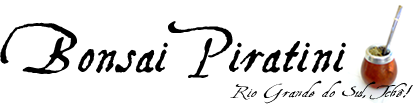 Bonsai Piratini Online