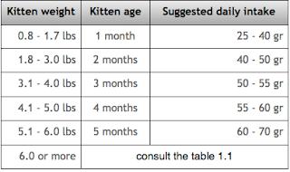 kittens food