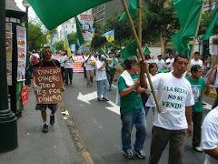 29EL PUEBLO DE LORETO EN LAS CALLES DE LIMA