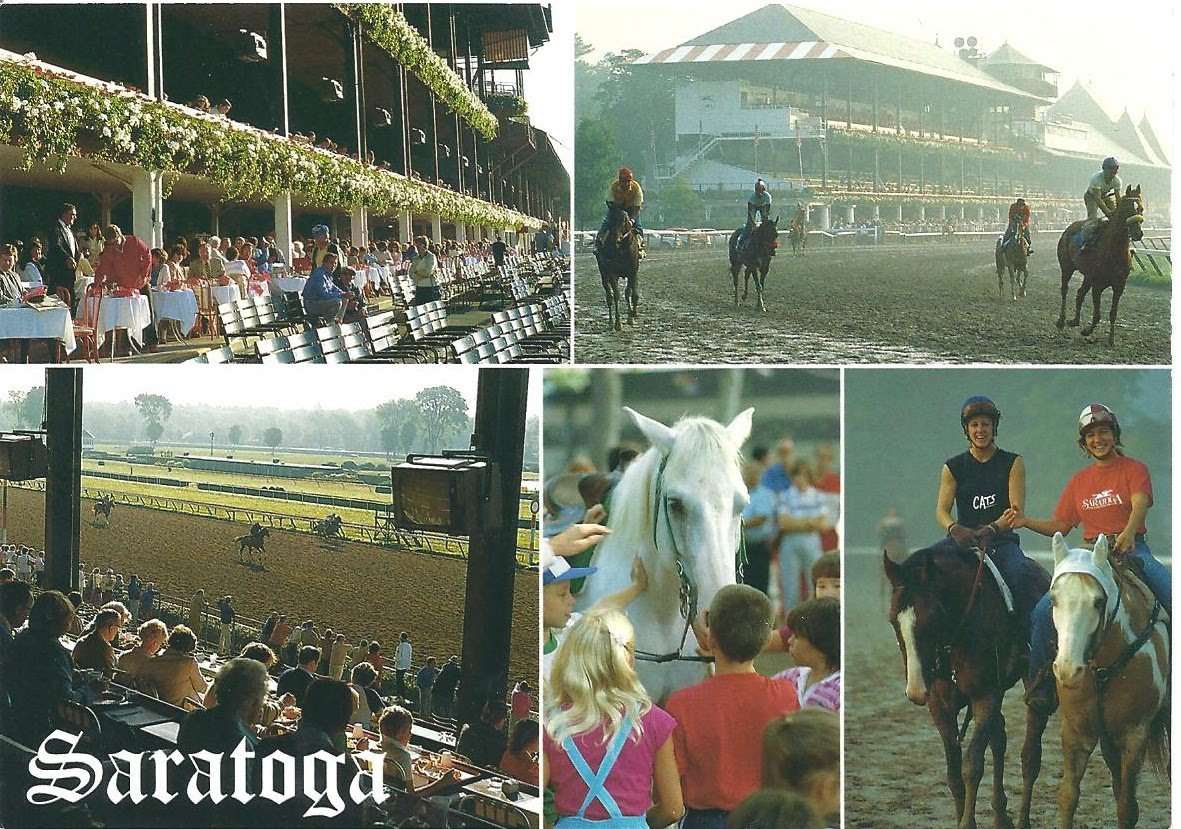 A Plethora Of Postcards Horse Racing Venues A Short Series