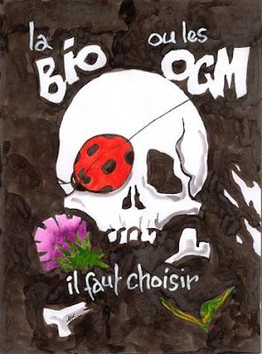 OGM: des faucheurs volontaires empêchent un cargo de soja de décharger à Lorient