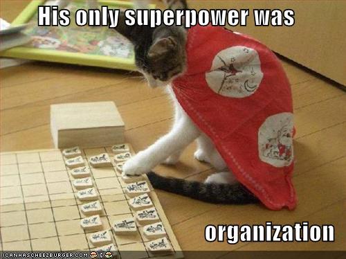 LOL Cats Super Hero!