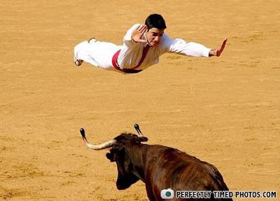 Jesus Bull Runaway Move!