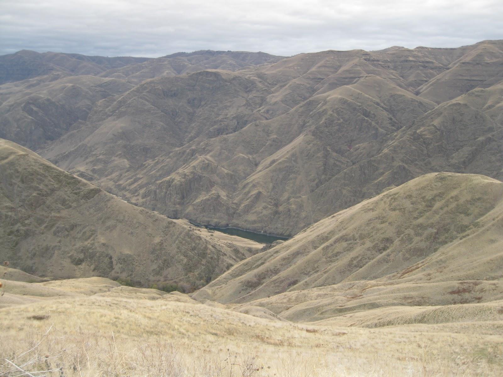 Essay Example: Canyon Ranch Case Study- Essay