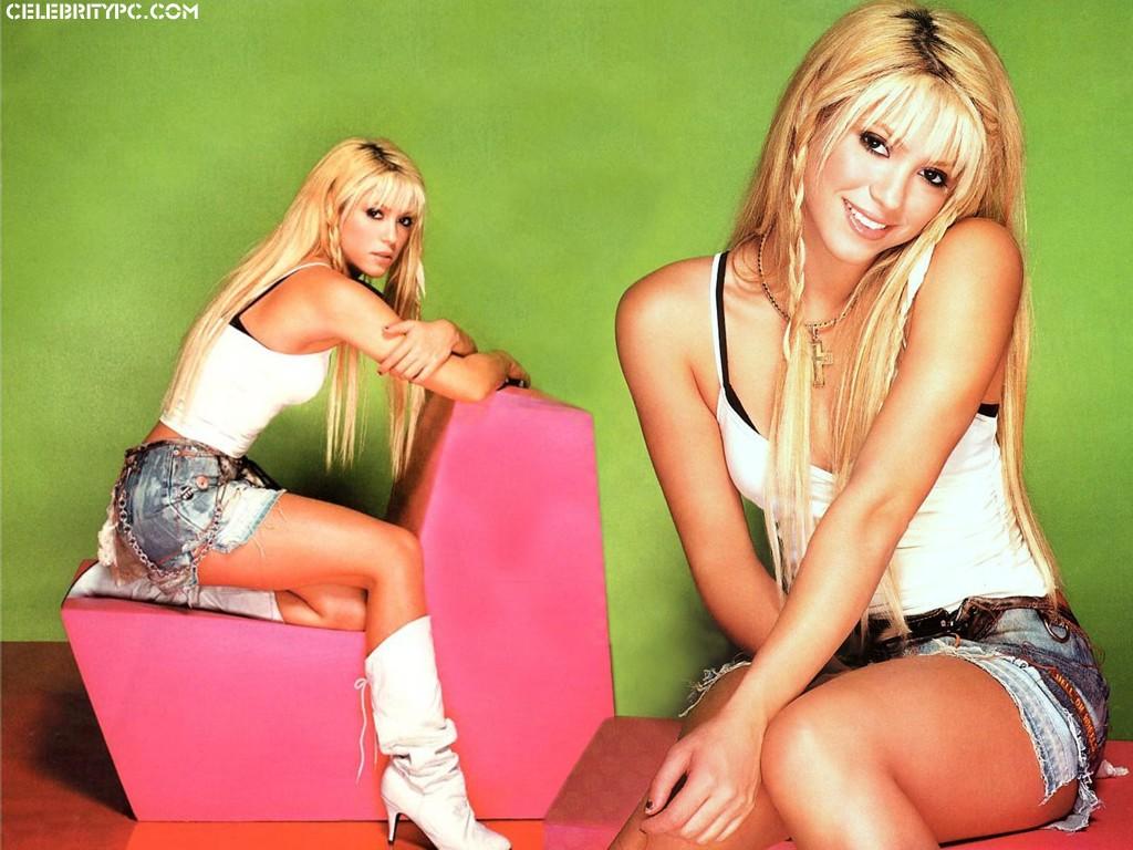 http://4.bp.blogspot.com/_yDR3IbBntEU/TCl8sf9n89I/AAAAAAAABGw/Nc4oTWY01RA/s1600/Shakira+waka+waka.jpg