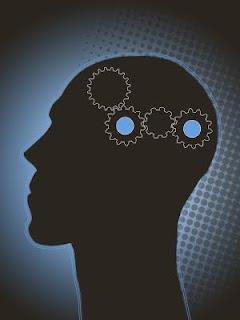 meccanismi cervello