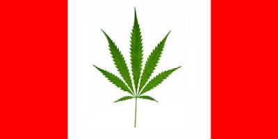 3 Different Cannabinoid-Based Medicines Approved by FDA