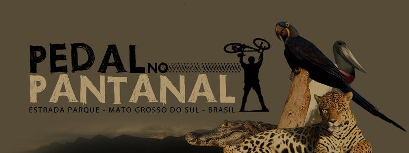 Pedal no Pantanal