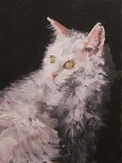 white cat, oil painting, Stephen Scott