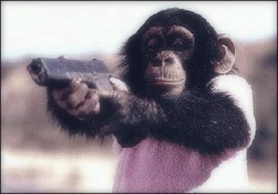 http://4.bp.blogspot.com/_yGohRMSv1SU/SG0oSAQEuAI/AAAAAAAAAbQ/LcrH37KRksc/s400/chimpan.jpg