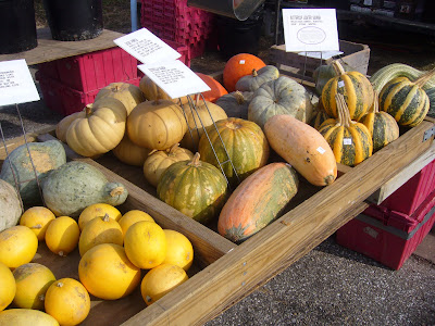 2 Green Acres visits a Maryland Farmers Market