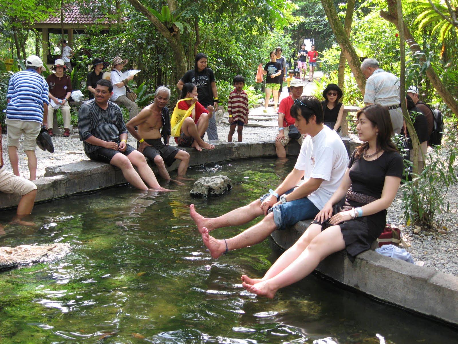 Sungai klah hot springs - Sg Klah Hot Springs 4 May 2008