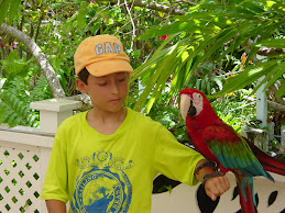 Me with a scarlet macaw