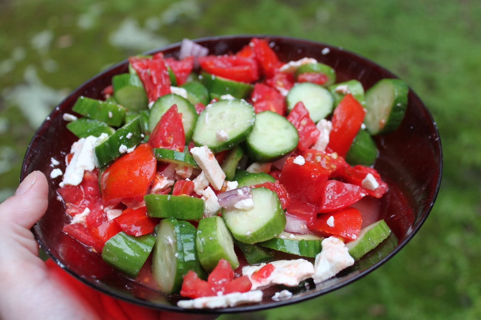 ... Have Eaten: Tomato, Cucumber, Red Onion and Feta Salad and Pizza