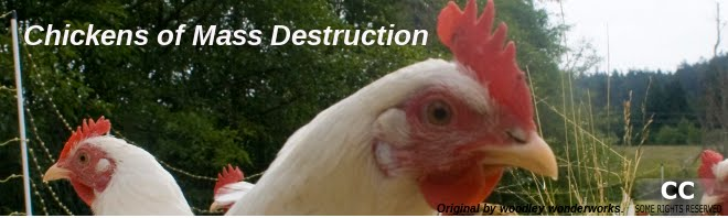 Chickens of Mass Destruction