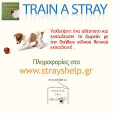 Train a Stray