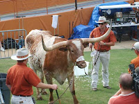 Texas Longhorns get their very own network