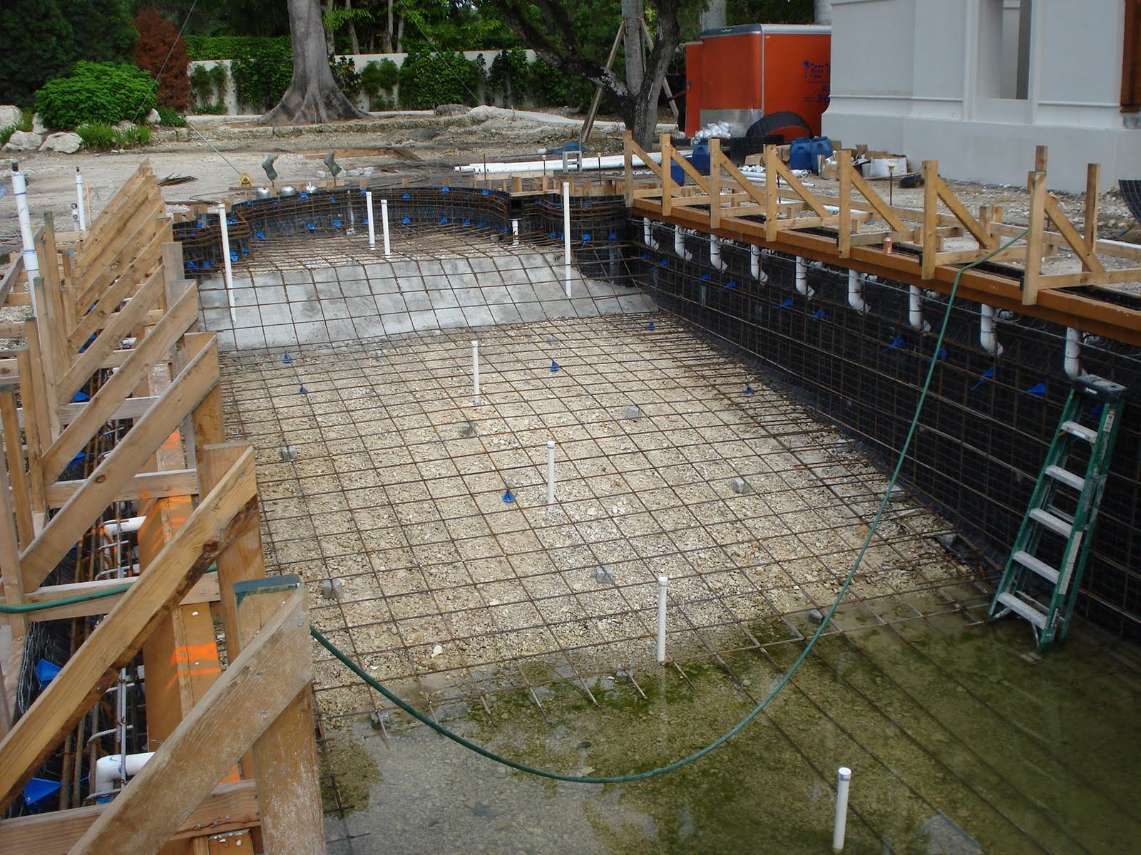 Reef Tropical Reef Tropical Pool Construction In Miami Fl