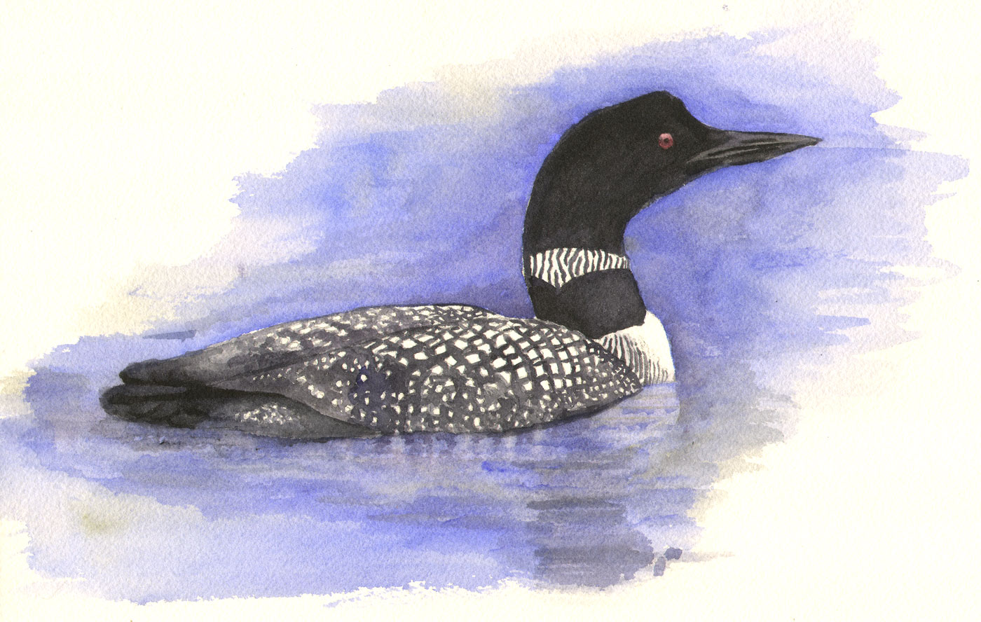 Loon painting - photo#10