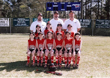 2004 Spring - Darlings (8U)