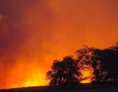 forest fire in USA