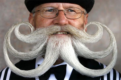 World Beard and Moustache Championship