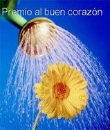 Premio Buen Corazon