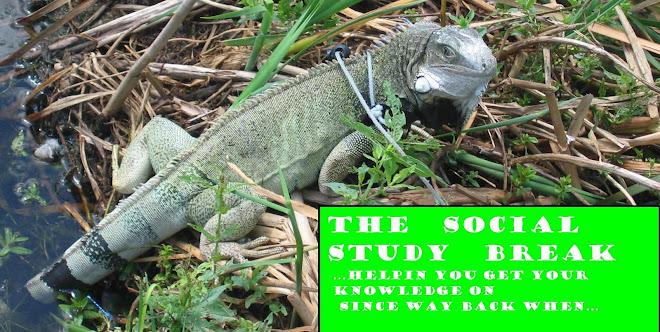 Social Study Break