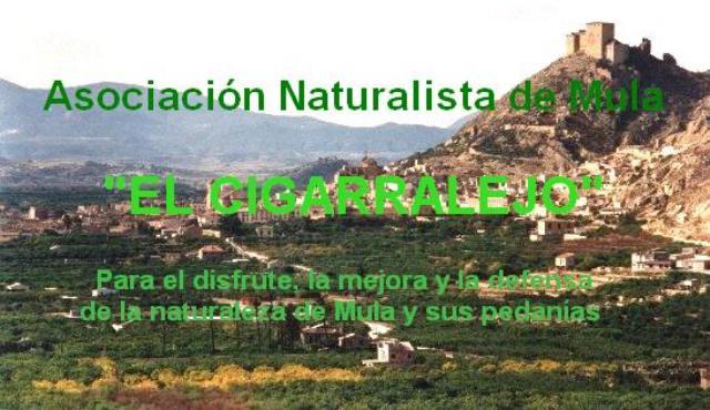 """Asociación Naturalista de Mula                                    """"El Cigarralejo"""""""