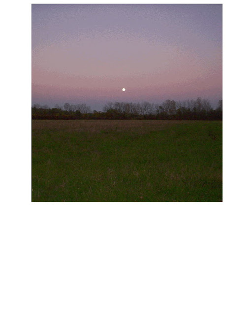 Hunter's Moon at Dusk 2010