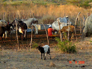 Agricultores de baixa renda pode ser espulso da comunidade Pilões I.