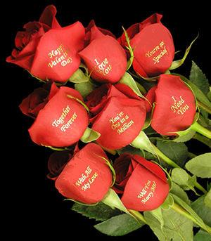 http://4.bp.blogspot.com/_yWGUOAIMsD0/TS_YBHuA5rI/AAAAAAAAAG4/9NnV7RM0crM/s400/valentine_roses-12149.jpg