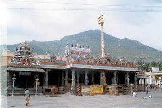 Arunachala Temple Golden Flag Tree
