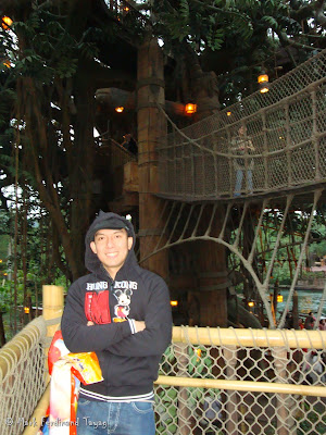 Disneyland's Tarzan's Tree House Photo 5