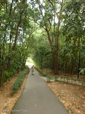 Mount Faber Singapore Hiking Batch 2 Photo 7