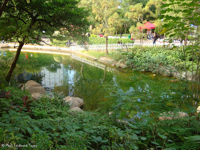 Hong Kong Park Photo 15