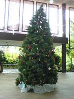 Singapore Christmas Tree 4