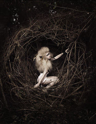 Allison Harvard ANTM Portfolio picture