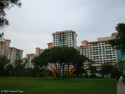 Singapore HDB and Trees Photo 2
