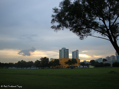 Singapore HDB and Trees Photo