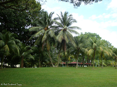 Yishun Town Garden Photo