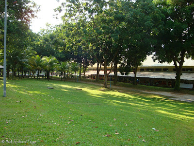 Yishun Town Garden Photo 3