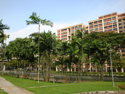 Yishun Swimming Complex Photo 2