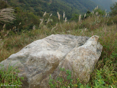 Wisdom Path Ngong Ping Photo 6