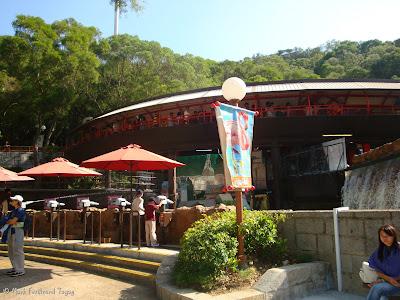 Ocean Park Hong Kong Batch 3 Photo 6