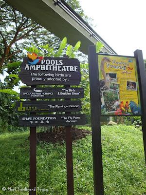 Jurong Bird Park - Birds n Buddies Show Photo 1